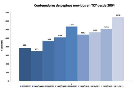 TCY-gráfico contenedores pepinos