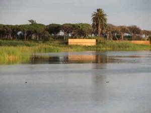 Delta LlobregatP